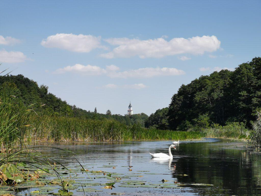 Blick auf Schloss Boitzenburg vom Wasser aus