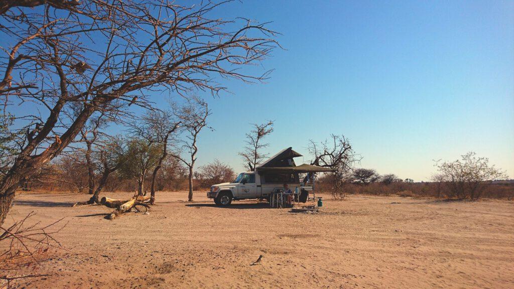 Flitterwochen - irgendwo in der Kalahari-Wüste von Botswana