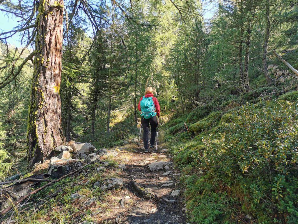 Auf dem Weg zur Weißkugel - die Tour beginnt in Lärchenwald