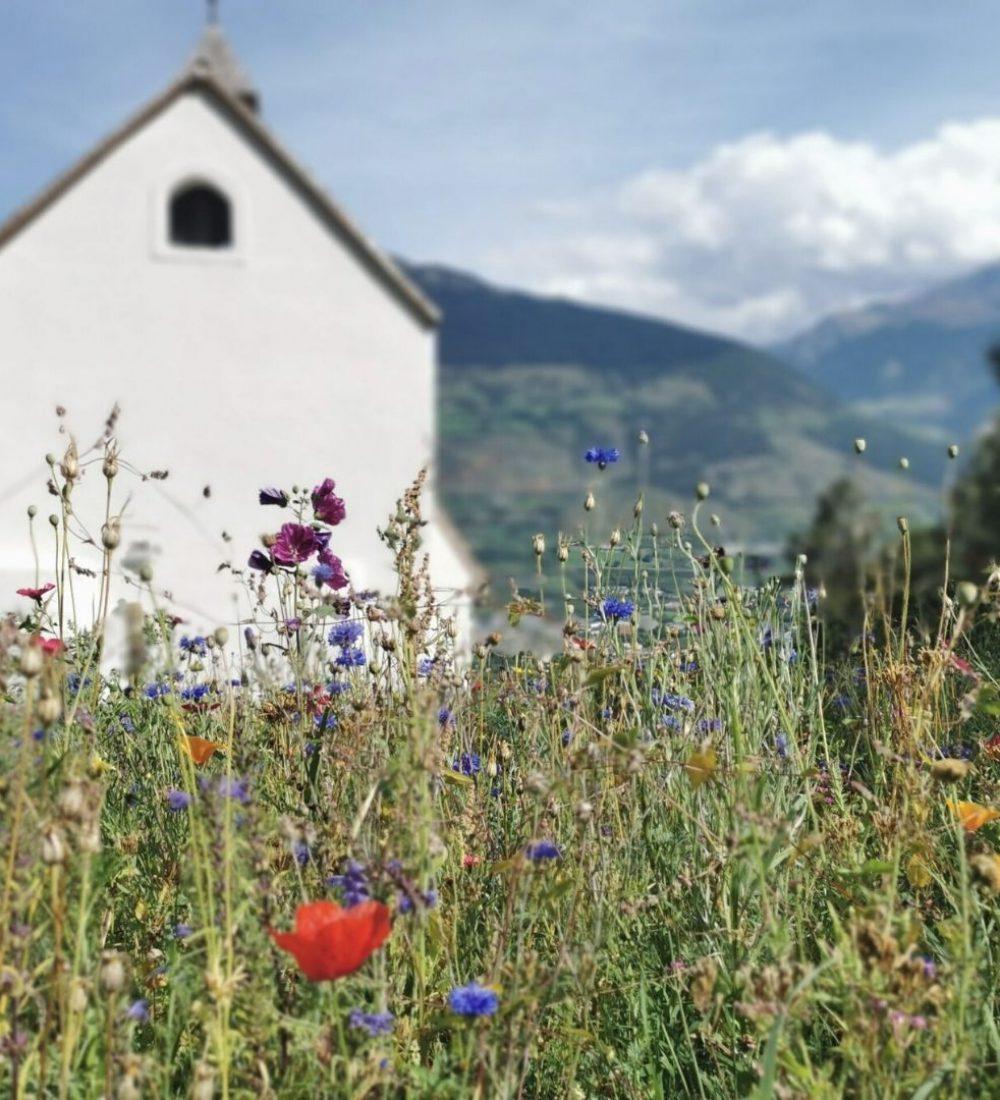 Reise-Filmtipp - Grenzenlos - Die Welt entdecken in Südtirol